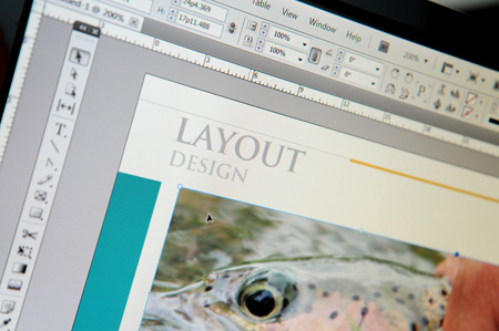 Layout Design Home page